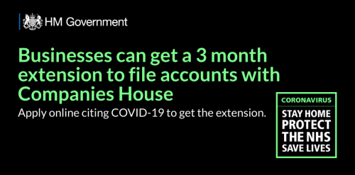 Companies House Accounts Extension